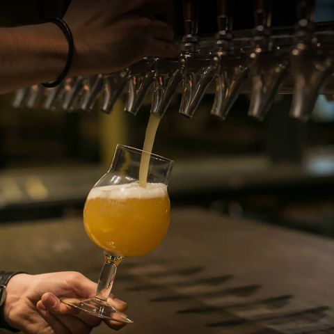 Pouring Chicago craft beer at Forbidden Root Restaurant & Brewery